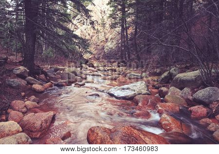 Scenic Colorado Forest River near Colorado Springs USA. Rocky Forest Creek Scenery