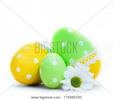 Easter eggs and spring flower decoration. Isolated on white
