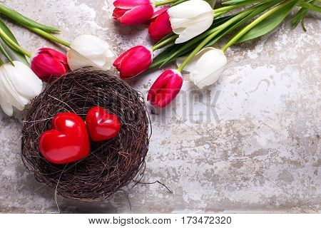 Red decorative hearts in nest and bright spring tulips flowers on grey textured background. Selective focus. Flat lay. Place for text.