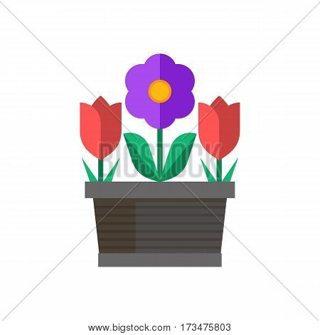 Spring flower pot with red tulips and abstract blossom. Flowerpot vector illustration in flat design.