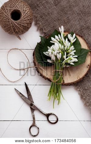 Spring Snowdrops On Wooden Table