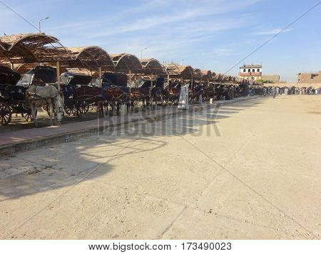 Egyptian stable for horses with wagon for tourists wishing to get a ride