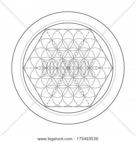 Flower Of Life symbol. Sacred geometry vector illustration