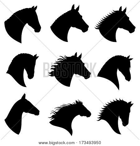 Horse head vector silhouettes. Black silhouette head horse, illustration of head wild stallion