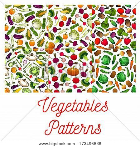 Vegetables patterns of farm vegetables on white background. Vegetarian nutrition farm organic products. Vegan food tomato, pepper, broccoli, peas, daikon radish, cauliflower, cabbage, cucumber