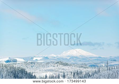 Pleasing outlook of snowy huge rock with wood of spruce in Oregon