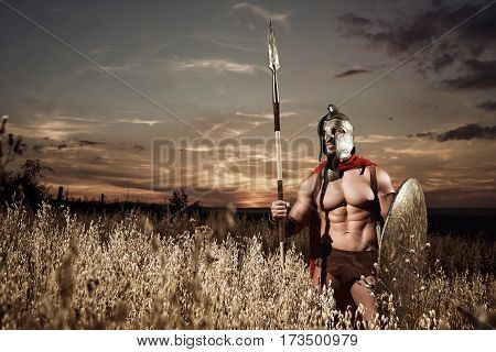 Historical figure. Sepia toned horizontal portrait of a roman legionary warrior with stunning muscular strong sexy body standing armed in a field beautiful sunset on the background copyspace