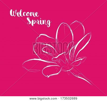 Welcome spring. Greeting card with a flower on a red background.
