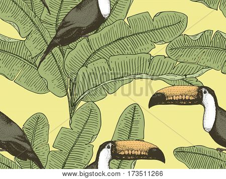 seamles vintage tropical pattern with leaves, hand drawn or enrgaved. vintage looking leaf and plants. toco toucan, bananas
