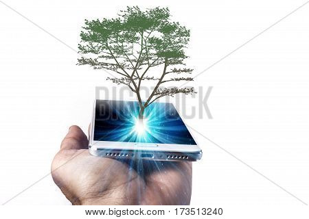 Phone And Tree