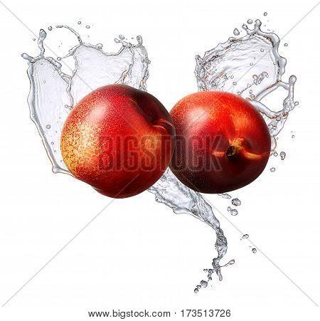 Water splash and fruits isolated on white backgroud. Fresh nectarine