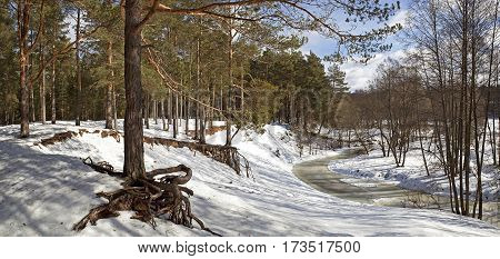 Panorama of the winter forest and frozen forest river.