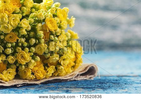 Kalanchoe Flowering Yellow Bouquet On Vintage Background. Select