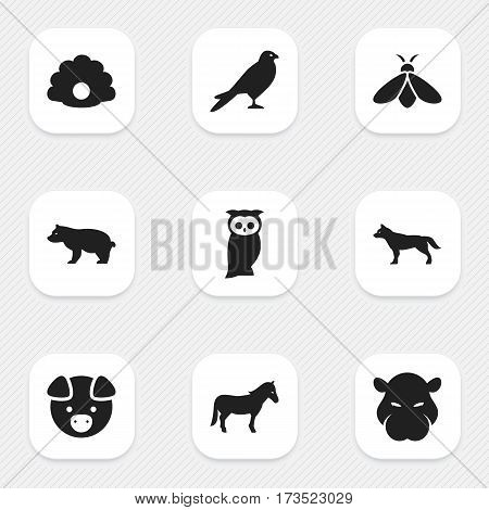 Set Of 9 Editable Zoology Icons. Includes Symbols Such As Owl, Hippopotamus, Dog And More. Can Be Used For Web, Mobile, UI And Infographic Design.
