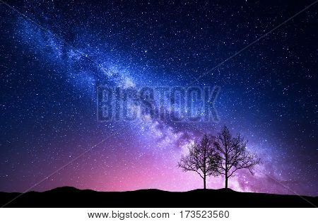 Starry Sky With Pink Milky Way And Trees. Night Landscape