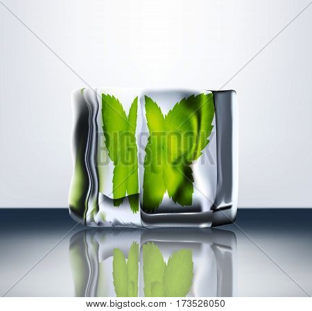 1Transparent Ice Blocks With Mint