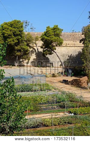 Part of the Venetian city defence wall with a garden in the foreground Heraklion Crete Greece Europe.