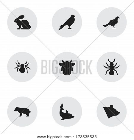 Set Of 9 Editable Zoo Icons. Includes Symbols Such As Playful Fish, Bedbug, Bunny And More. Can Be Used For Web, Mobile, UI And Infographic Design.