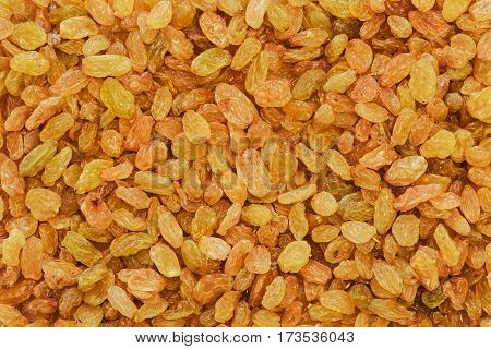 dried white, yellow or golden raisin sultana