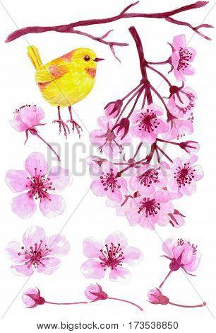 Cherry Blossom And Yellow Bird Set