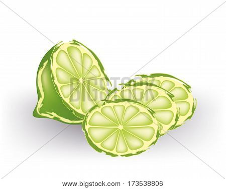 Half lime with slices on white background