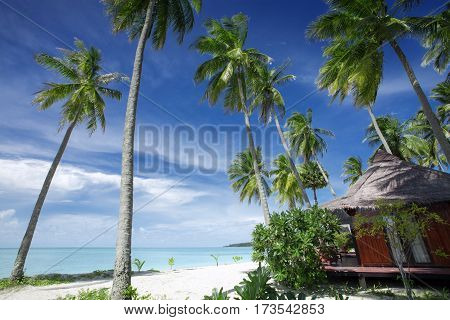 View of nice bungalow on  tropical empty sandy beach with some palm