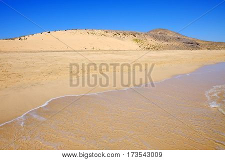 View on the beach Sotavento with sand dunes on the Canary Island Fuerteventura Spain.