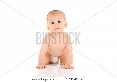 Indoor portrait of asian crawling baby on white background