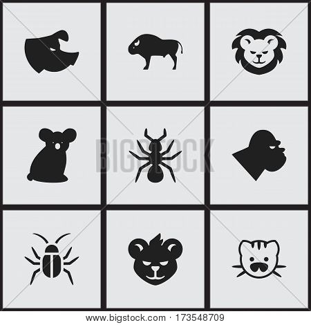 Set Of 9 Editable Animal Icons. Includes Symbols Such As Chimpanzee, Cockroach, Bedbug And More. Can Be Used For Web, Mobile, UI And Infographic Design.