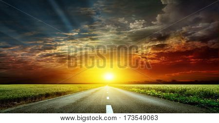 An asphalt road at sunset. It takes a road through fields of wheat and rye