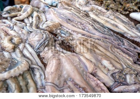 Fresh raw octopus in fish market in Asia
