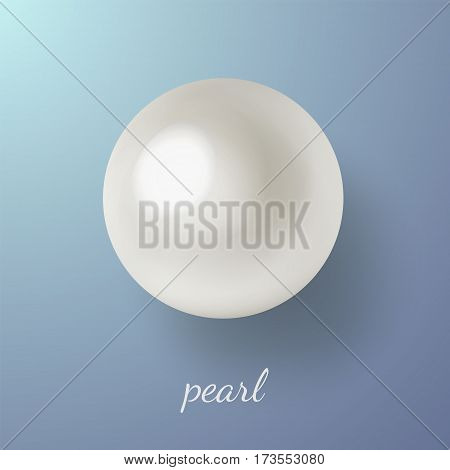 Vector illustration of shiny natural white sea pearl with light effects isolated on blue background. Caption pearl