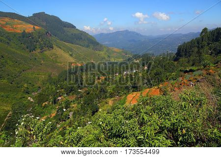 Beautiful mountain landscape with tea plantation in Sri Lanka