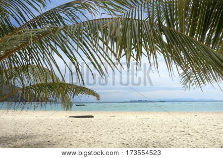 Palm leaves and white sand beach - tropical background