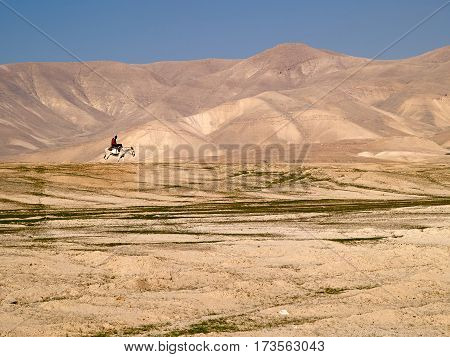 Bedouin rides on donkey through sandy desert great travel background image