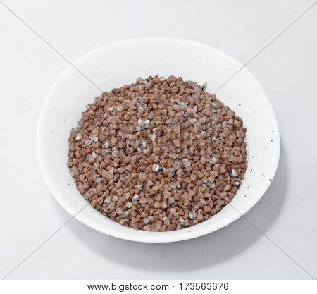 buckwheat in plate isolated on white background