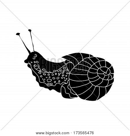Black silhouette of a slug on a white background. Snail, vector illustration