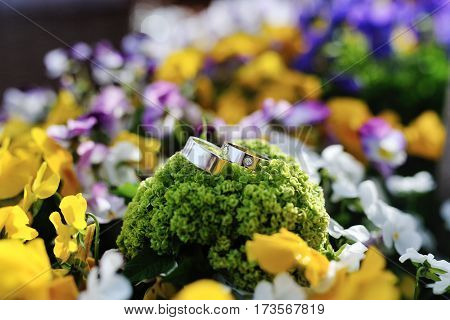Luxury wedding rings on background colored flowers