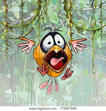 scared cartoon funny bird with open beak
