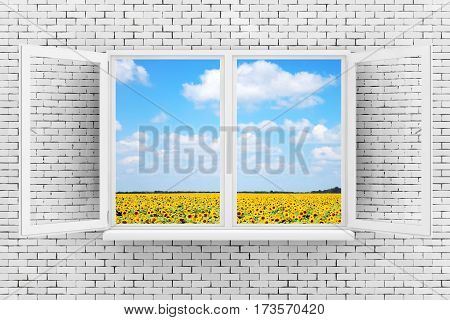 Sky with Fild of Sunflowers Seen Through White Opened Window on Brick Wall extreme closeup. 3d Rendering.