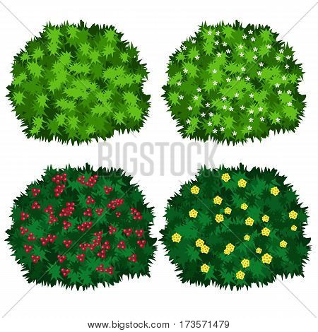 Bushes with flowers set. Green bushes in blossom isolated on white background. Use as landscape element for scene creating. Vector illustration