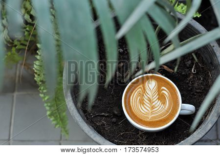 Coffee Cup With Latte Art In The Flowerpot