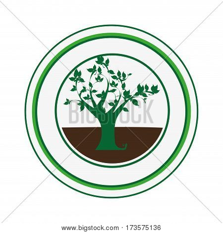 decorative circular frame with leafy tree plant vector illustration