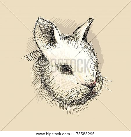 Vector graphic sketch of white baby rabbit profile on the beige background. Silhouette of decorative cute bunny head in lineart style. Symbol of Happy Easter.