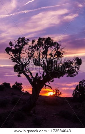 a colorful sunset in arches national park utah