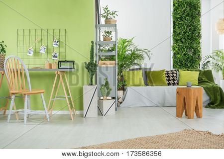 Green Home Interior With Sofa