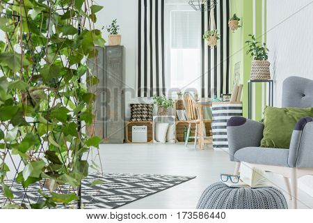 Home Interior With Decorative Ivy