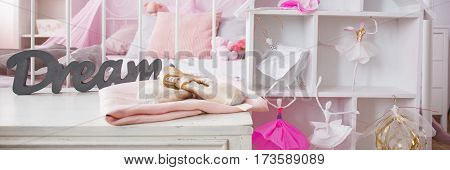 Shelf And Doll House