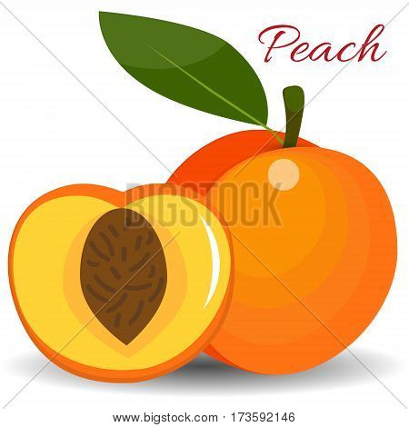 Peach isolated vector icon. Peach fruit on branch with leaf. Juice or jam branding logotype. Peach icon vector filled flat sign solid colorful pictogram isolated on white logo illustration