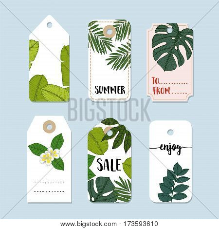 Set of hand drawn summer vintage sale labels and gift tags. Trendy tropical jungle design with palm and monstera leaves. Isolated vector objects. Stock illustrations.